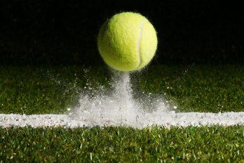 Paris sportifs en ligne sur le tennis en plein essor